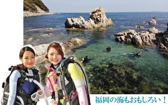 ファンダイブ トップ 志賀島